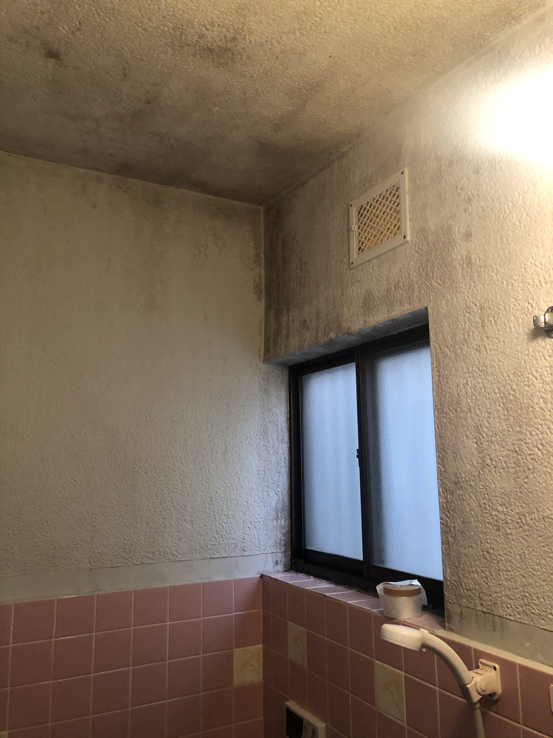 お風呂の壁を塗りました